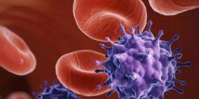 El 18 por ciento de personas transgénero padecen VIH