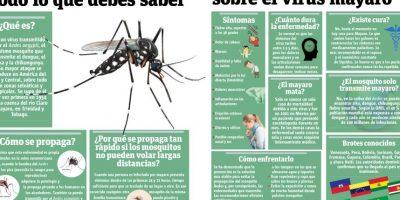 Infografía: Todo lo que debes saber sobre el virus mayaro