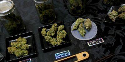 El excedente de impuestos derivados de marihuana será usado para combatir el bullying Foto:Getty Images