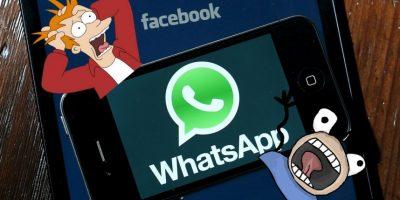 WhatsApp: ¿Aceptar o no los nuevos términos y condiciones?