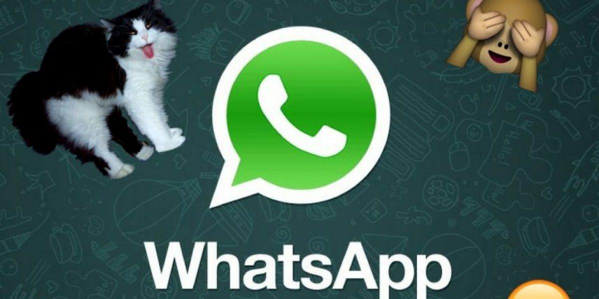 WhatsApp: Así pueden hacer videollamadas
