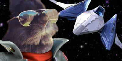 Batalla de Photoshop: Conejo con gafas hizo estallar a Internet