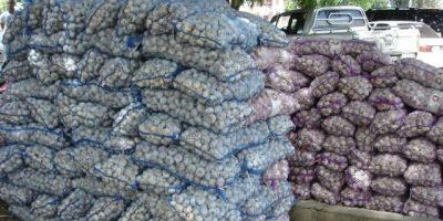 PN detiene a 7 hombres y les incauta 244 sacos de ajo procedente Haití