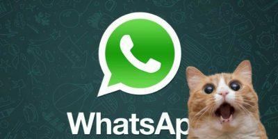 WhatsApp: ¿Cómo hacer sus propios GIFs y mandárselos a sus amigos?