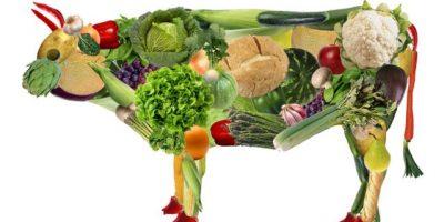 Infografía: Día Mundial del Veganismo: Cambia ese filete por Seitán