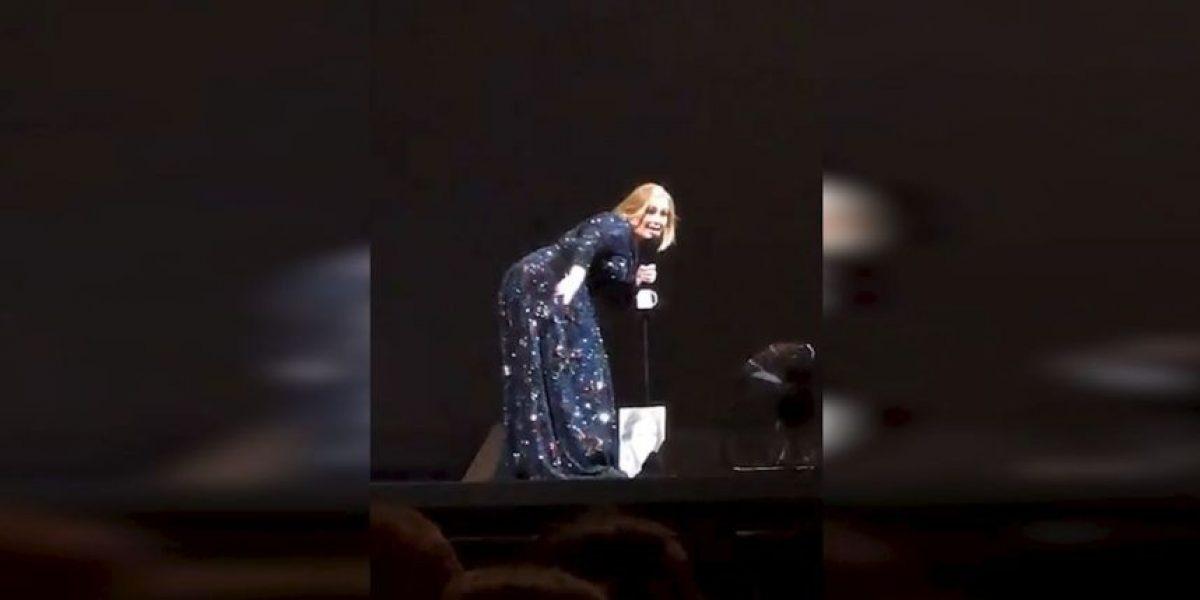 ¡Qué miedo! Adele fue sorprendida por un murciélago en México