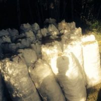 Carbón incautado Foto:@ambienterd