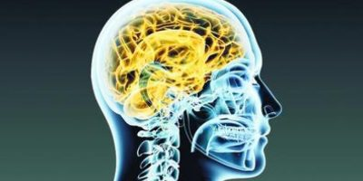 Neuromarketing Foto:Fuente externa