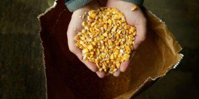 7. Productos modificados genéticamente Foto:Getty Images