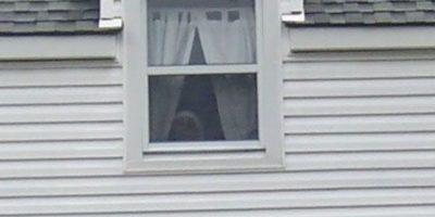 6. Aunque no se sabe si se trata de un ente paranormal, los cibernáutas piensan que trata de un fantasma. Foto:Vía Imgur