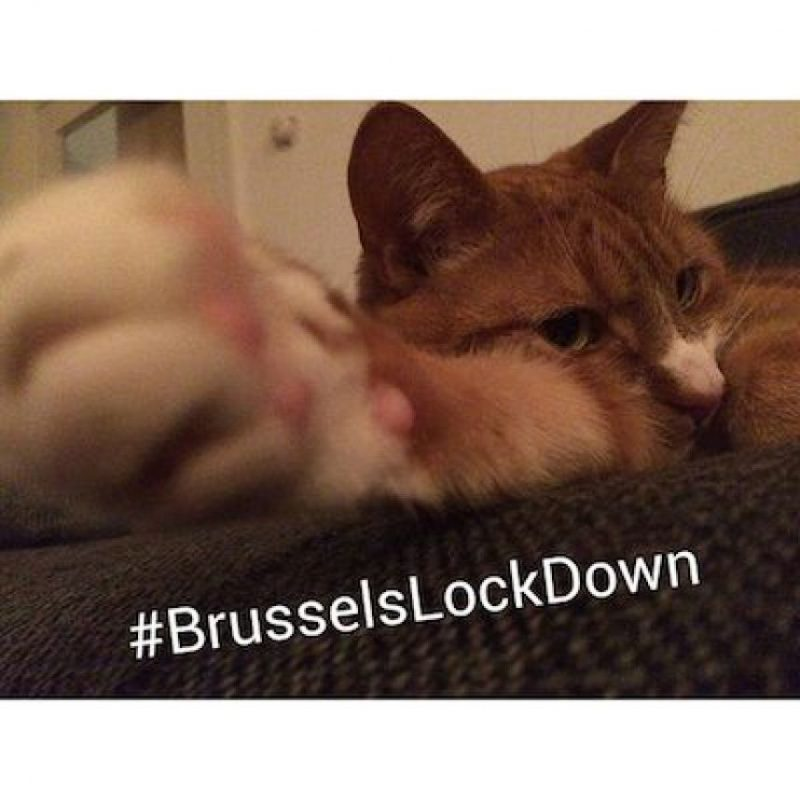 Foto: Instagram.com/explore/tags/brusselslockdown/