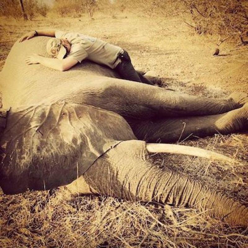 Incluso, abrazó a un elefante Foto:Instagram.com/KensingtonRoyal