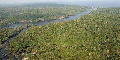 Metro en COP21: Los parques naturales podrían salvarnos