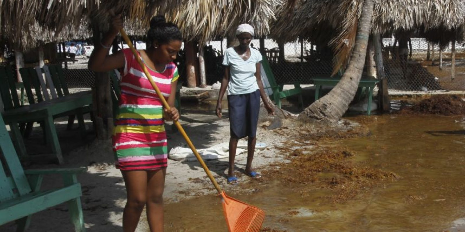 Propietarios de comercios intentan limpiar las algas. Foto:ROBERTO GUZMÁN