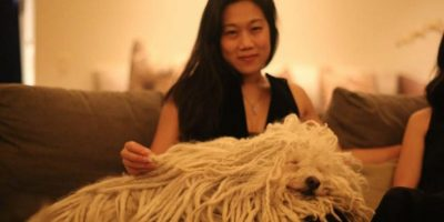 La pasa increíble. Foto:facebook.com/beast.the.dog