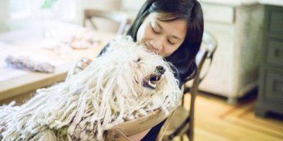 Priscila lo consiente. Foto:facebook.com/beast.the.dog
