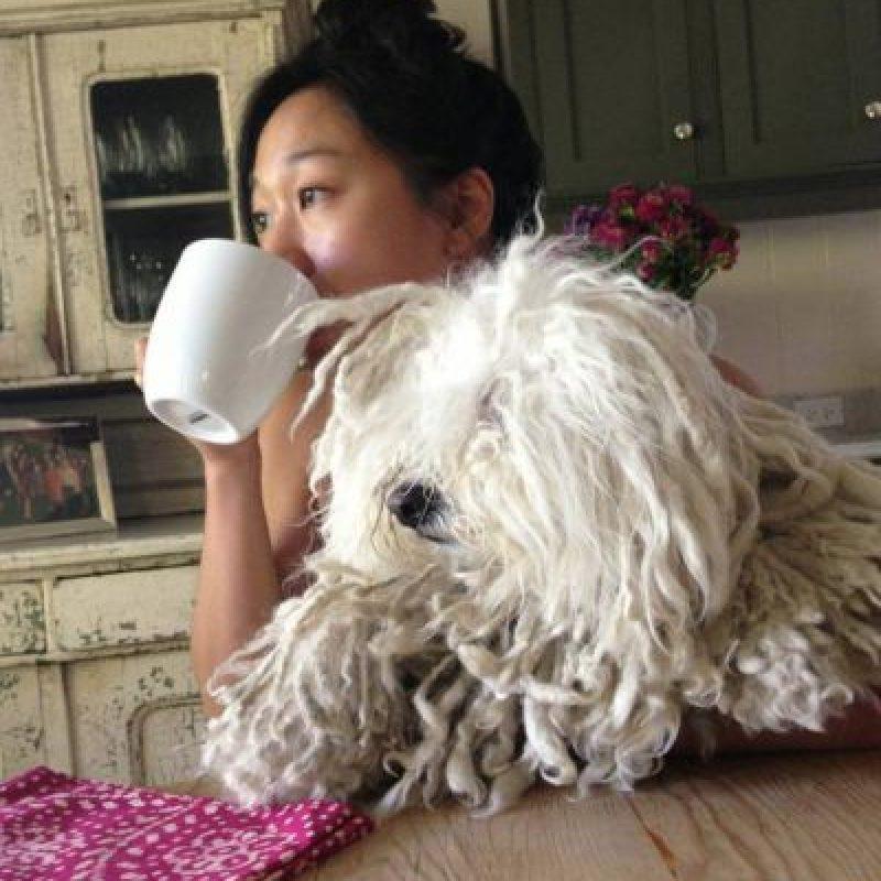Acompañando a Priscilla Chan. Foto:facebook.com/beast.the.dog