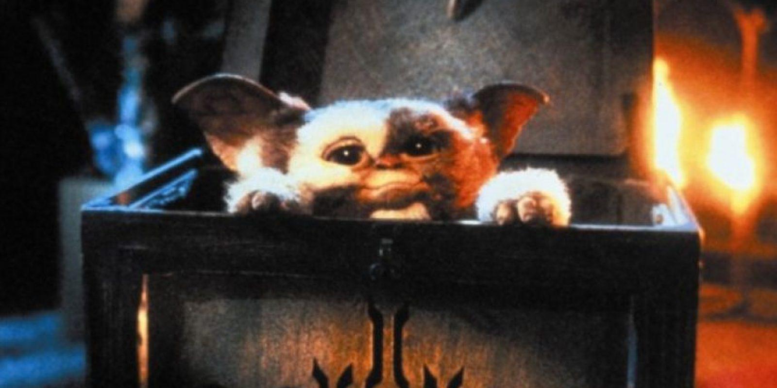 """Los problemas comienzan cuando un amigo de """"Billy"""" derrama accidentalmente agua sobre """"Gizmo"""". Foto:Warner Bros"""