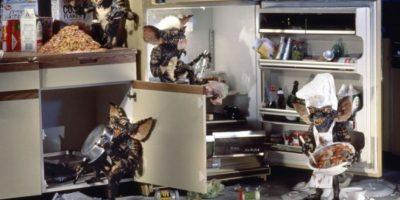 """""""Rayita"""" engaña a """"Billy"""" para que le dé de comer después de medianoche. Tras la ingesta de alimentos, las criaturas se convierten en monstruos de aspecto reptiliano llamados """"Gremlins"""". Foto:Warner Bros"""