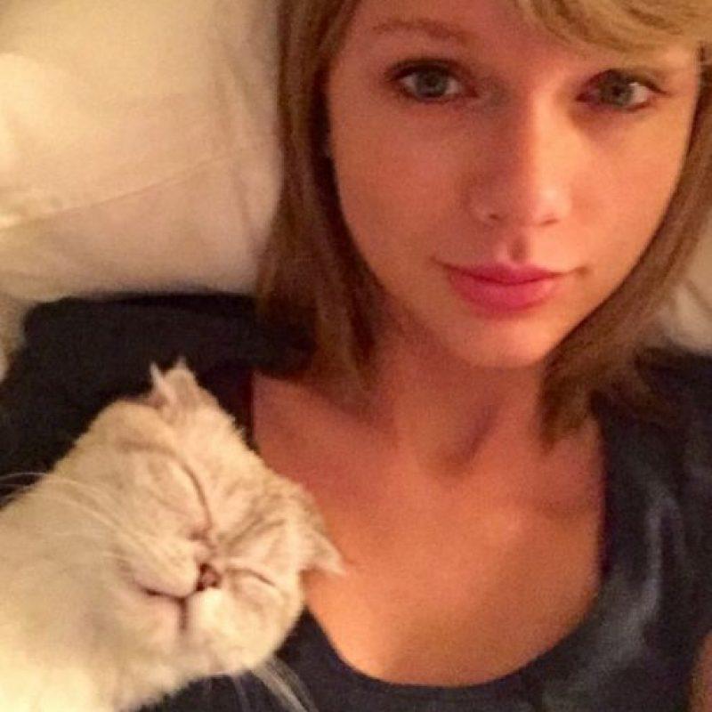 9- Taylor Swift recostada con su gata Meredith durmiendo. 2.2 millones de me gusta. Foto:vía instagram.com/taylorswift