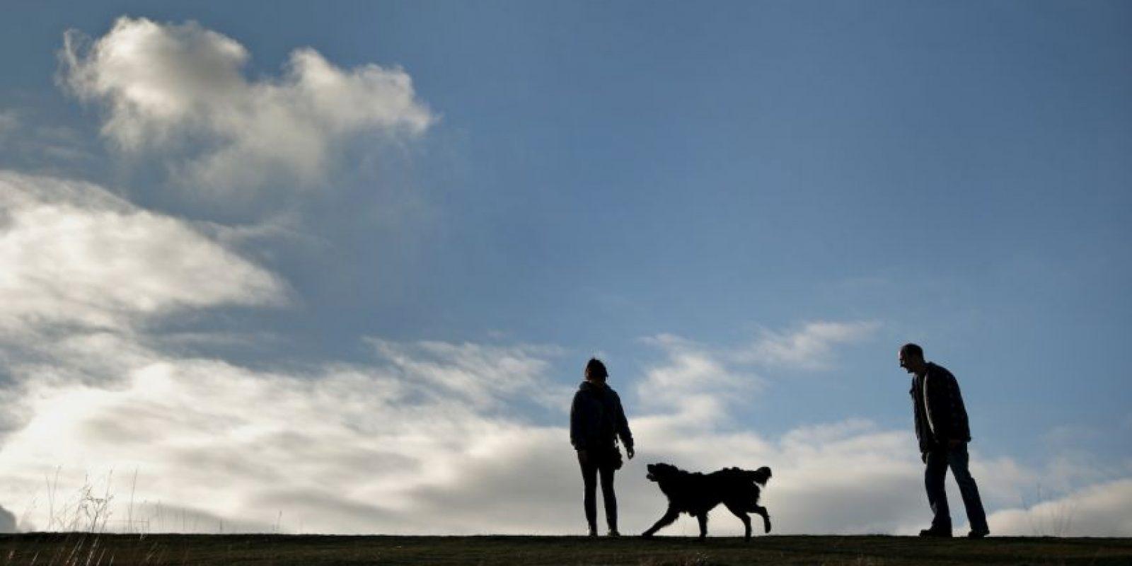 Además, una caminata de 20 minutos nos hace quemar entre 90 y 110 calorías. Foto:Getty Images