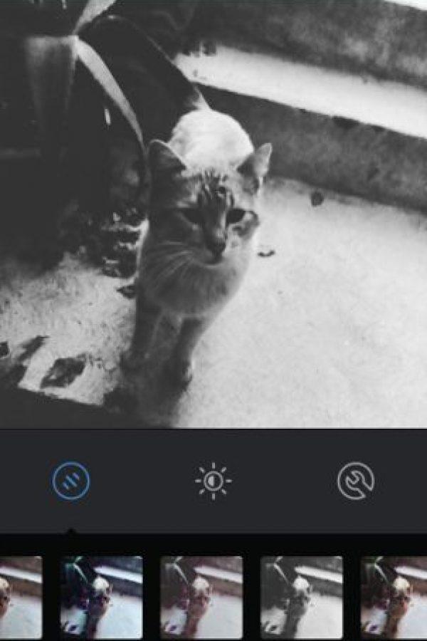 Moon Foto:Instagram