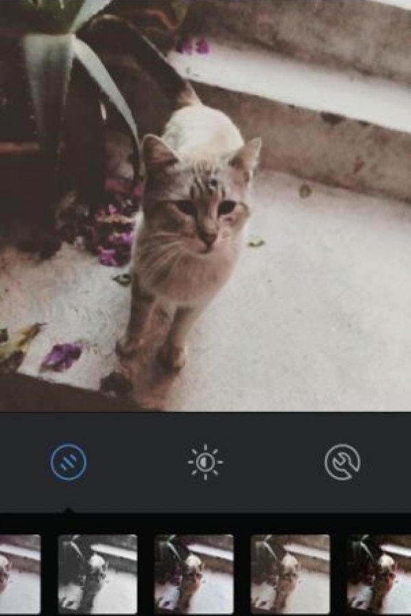 Reyes Foto:Instagram