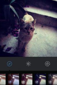 X-Pro II Foto:Instagram