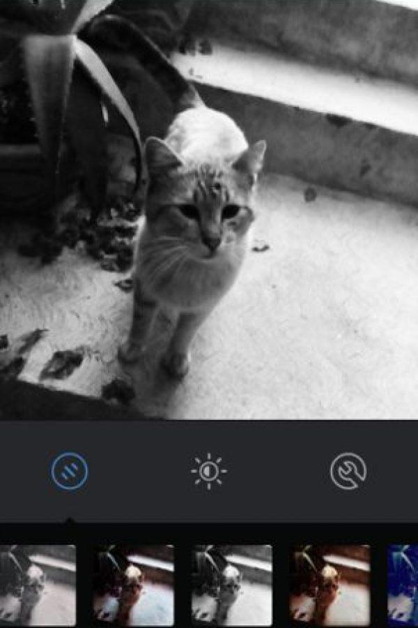 Inkwell Foto:Instagram