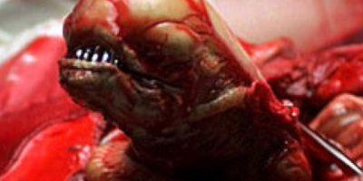 Tiene una boca retráctil con colmillos. Foto:vía RealMounstrosities