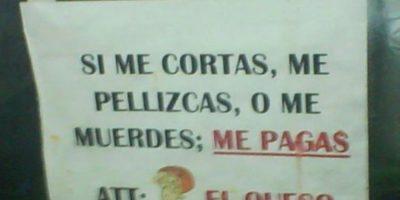 Dios mío, quesos que hablan. Foto:vía Colombianadas.net