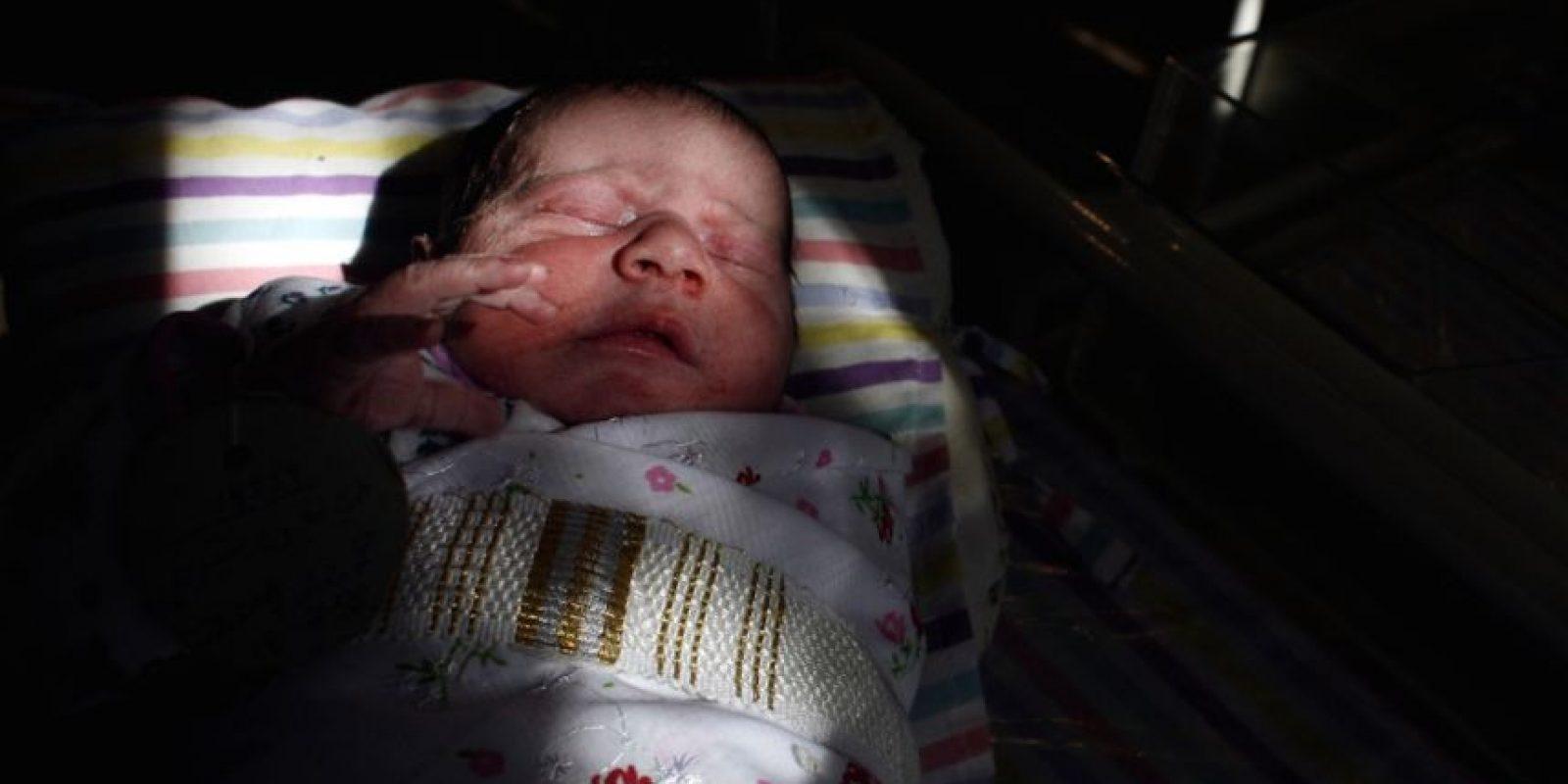 Al respecto de su adopción, Jill mencionó: Foto:vía Getty Images