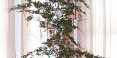 Este podría ser el árbol de Navidad más triste del mundo