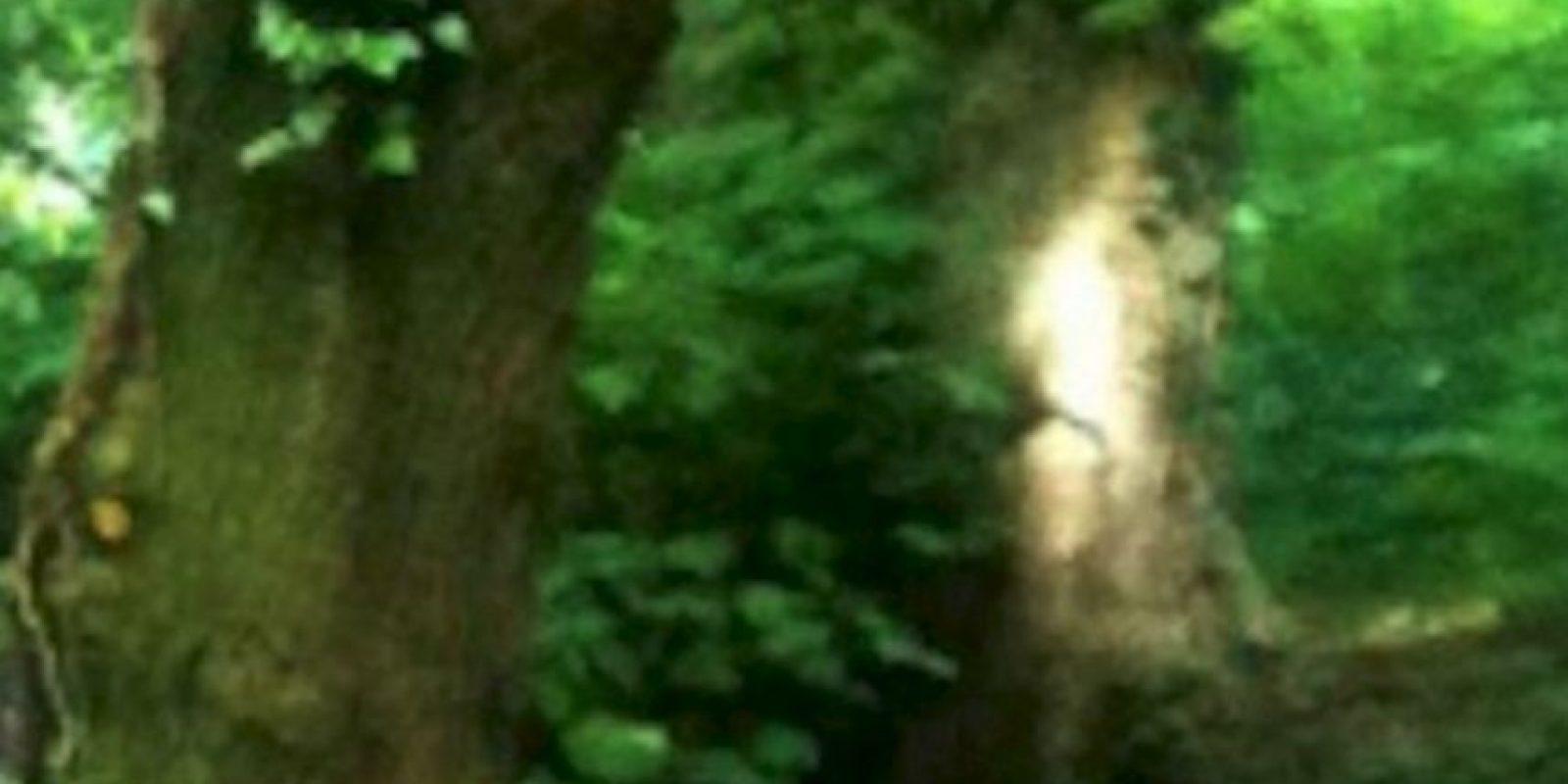 6. Elaine Steward, de 65 años, se llevó una gran sopresa al descubrir algo insólito en una de las fotos que tomó mientras realizaba una caminata. Foto:Birminghamhistory