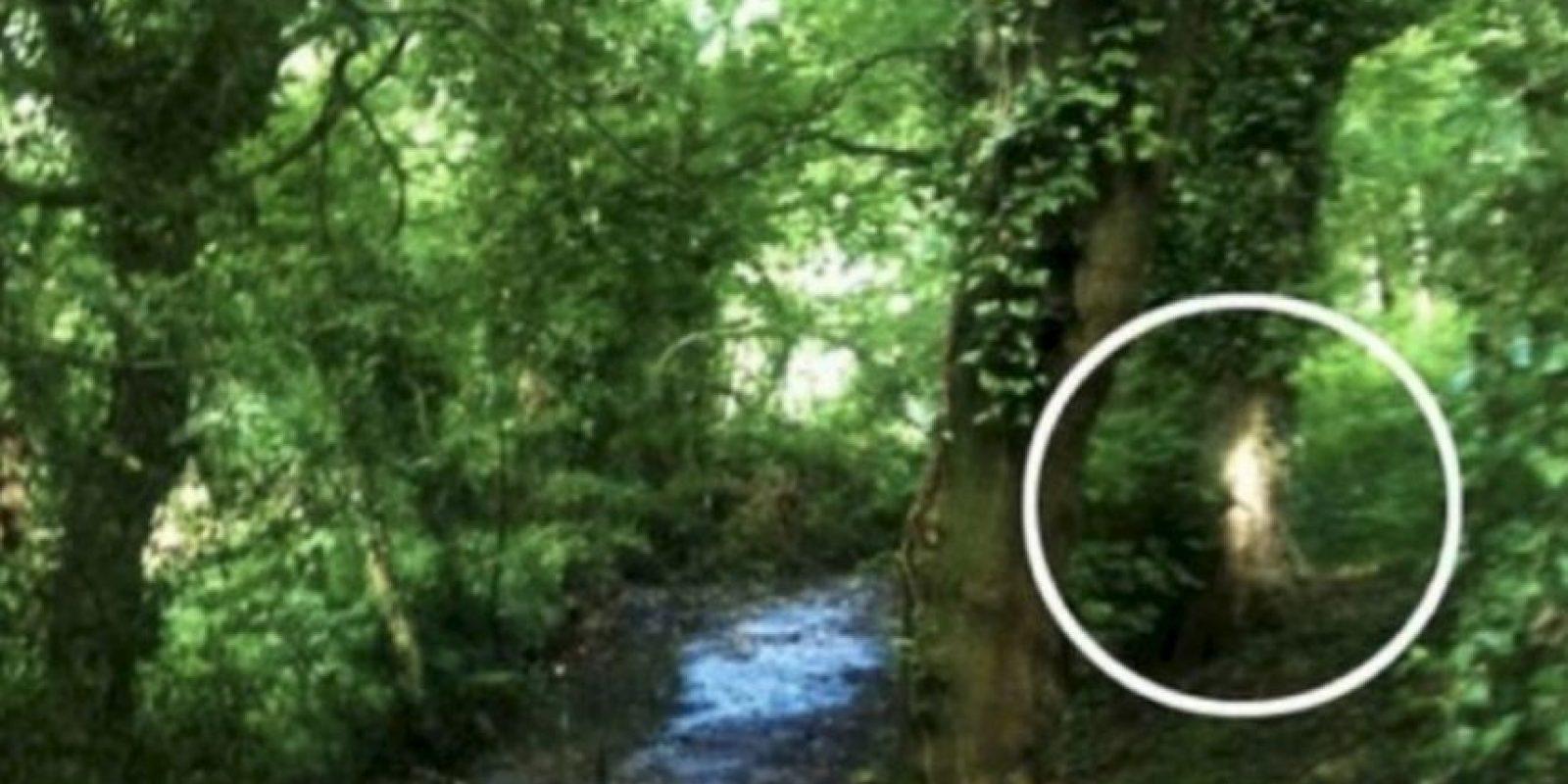Después de haber captado las imágenes en un bosque de Birmingham, en Reino Unido, con su smartphone, llegó a casa y al revisarlas se percató de una figura extraña en un árbol. Foto:Birminghamhistory