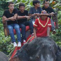 Maddox (14 años), Pax (11 años), Zahara (10 años) y Shiloh Jolie-Pitt (9 años) fueron captados en un divertido paseo en elefante en Angkor, Camboya. Foto:Grosby Group