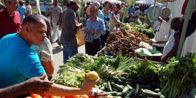 5- Inseguridad alimentaria. Para que la comida llegue a la mesa de cada dominicano, la agricultura representa el ingrediente principal. Sin agua no se riega la tierra y sin suelos húmedos la madre Tierra no da los frutos que se esperan recibir luego de cada cosecha.Según el viceministro de suelos y aguas, José Alarcón, cuando se defiende el suelo de las sequías, y de las inundaciones, mejoran los procesos productivos y se puede brindar a la población la tranquilidad alimentaria que necesita. Un ejemplo de lo antes citado, la sequía que el año pasado tenía preocupados al Gobierno, pero sobre todo a la población y a los grandes y pequeños agricultores. Foto:Fuente externa