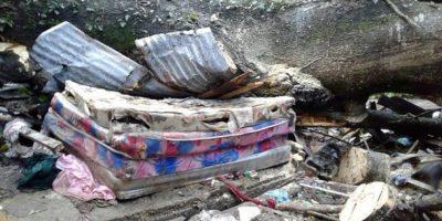Familia muere aplastada por árbol en Salcedo