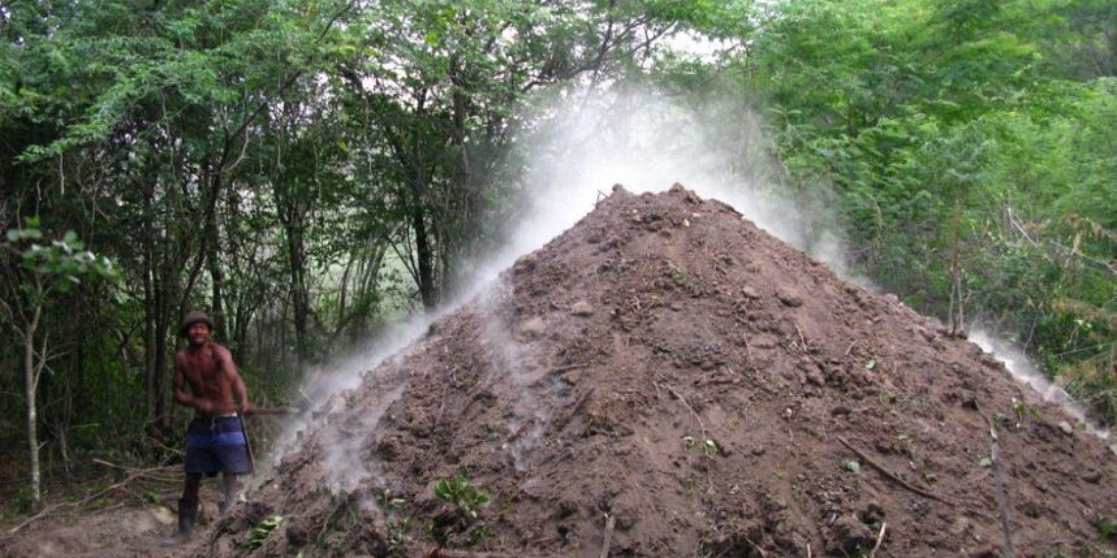 """3- Deforestación. La quema de árboles en República Dominicana no es un secreto para nadie. Basta observar, en uno de esos viajes al interior, el humo que sale de las montañas de la Cordillera Central, donde nacen más de 700 cauces de ríos y arroyos.""""Aunque no tenemos una situación crítica todavía, son preocupantes los niveles de deforestación y de mal manejo de especies que son sembradas. Esto conecta directamente con la situación de erosión y pérdida de biodiversidad"""", subraya Kranwinkel, también integrante de la Comisión Nacional para la Pastoral de Ecología y Medio Ambiente. Foto:Fuente externa"""