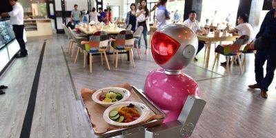 """2- Camarero. Ya no es necesario que los seres humanos nos traigan la comida en los restaurantes. Por ejemplo, en la provincia china de Zhejiang ya hay un lugar donde puedes ser a-tendido por el robot """"masculino"""" llamado Little Blue"""" y la """"femenina"""" Little Peach. Los dos ayudan a ordenar las comidas y a entregarla a los clientes a lo largo de una pista magnética. Foto:Fuente externa"""