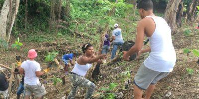 Alta Vista desarrolla jornada para preservar áreas verdes en el Día Mundial del Medio Ambiente