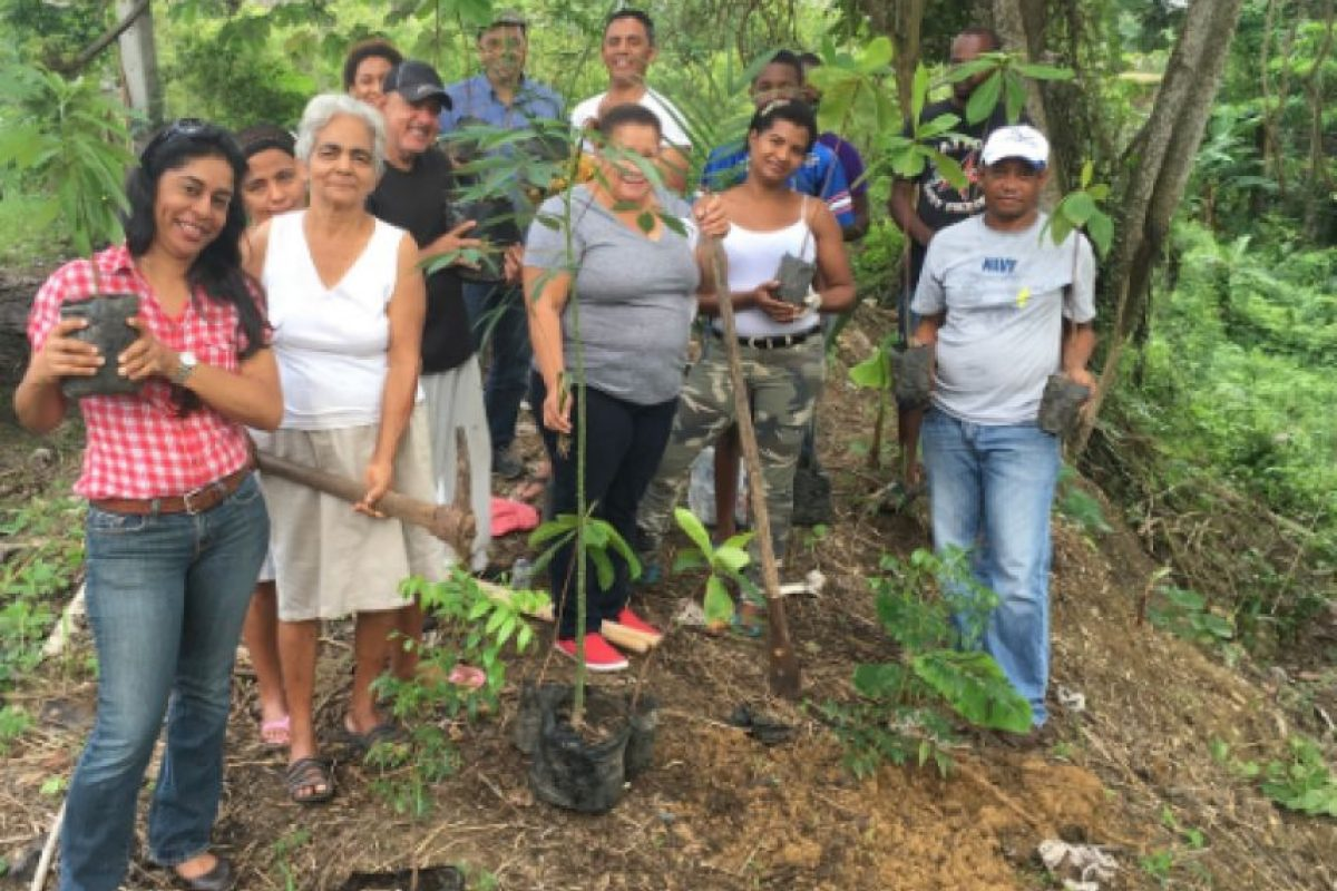 La Junta de Vecinos del Residencial Alta Vista, en Los Alcarrizos durante la reforestación Foto:Fuente Externa