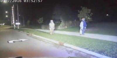 Fueron detenidos por las autoridades Foto:Menasha Police Department i