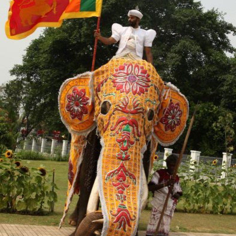 8. Sri Lanka Foto:Getty Images