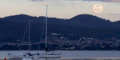 Imágenes captadas en Hobart, Australia Foto:Getty Images