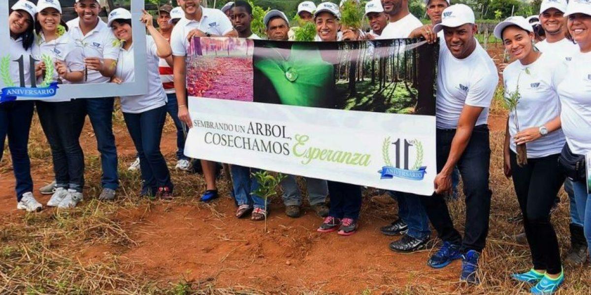Despacho Legal realizará jornada de reforestación