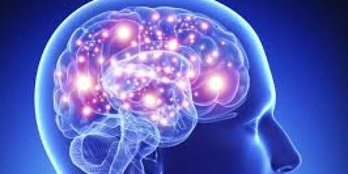 Neuro liderazgo para el éxito