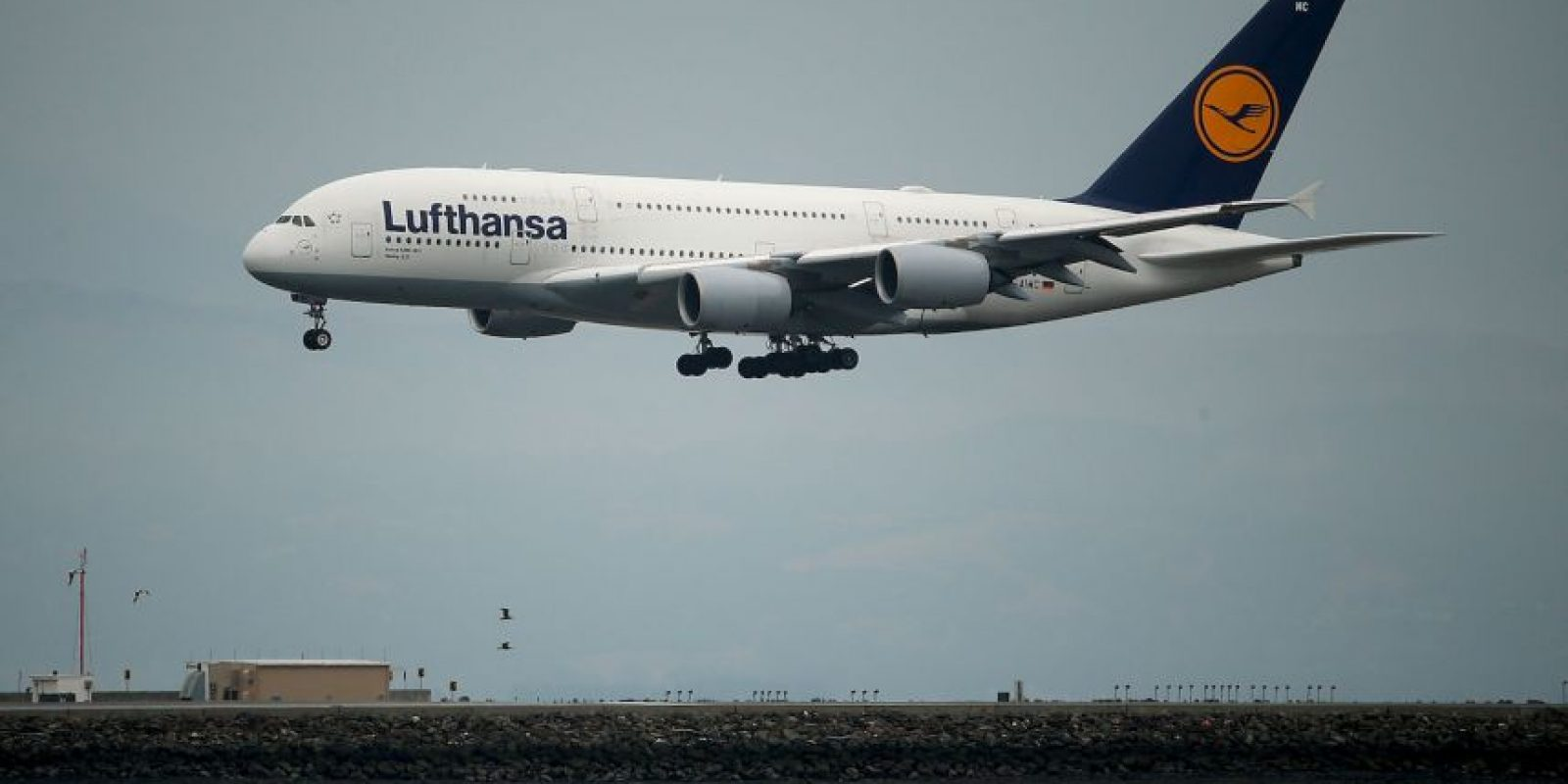 Lufthansa- Alemania Foto: Getty Images