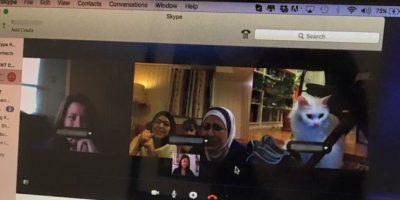 La cual se encontró en Noruega. Tuvieron una mini reunión en Skype Foto:Twitter.com/DiasTheCat
