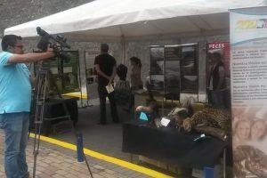Instituto Nacional de Biodiversidad presente en el paseo Escénico La Floresta Guápulo. Foto:@EcuadorMecn